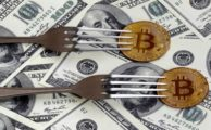 Bitcoins Forks in 2018